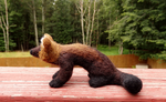 Needle Felted Fisher Soft Sculpture by DancingVulture