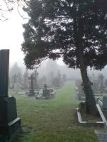 Foggy at the cemetery 20 by rudeturk