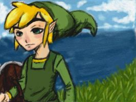 Link on ds by TheLinkMaster