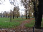 Park of leaves by Lorettefromchaos