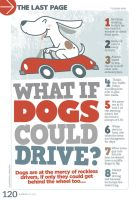 What if dogs could drive? by mokoo