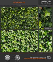 Ivy Pattern 2.0 by Sed-rah-Stock