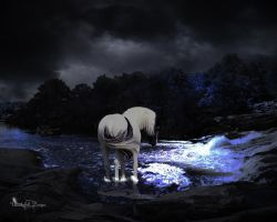 My Reflection Is the Hardest Image to See by Thunderbolt-Designs