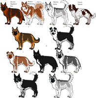 4-Way Mixed Breeds Random, 11 by Leonca