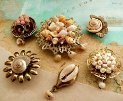 Collaged seashell magnets by janedean
