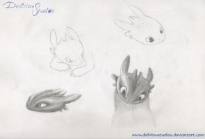 Toothless Studys by DeliriouStudios