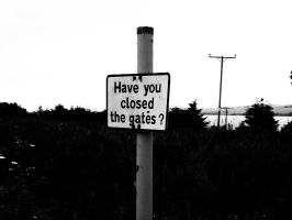have you closed the gates? by insomniana
