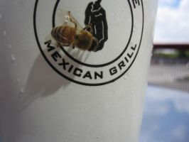 Chipotle Bee by r-a-i-n-y