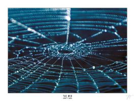 THE WEB by JTphoto