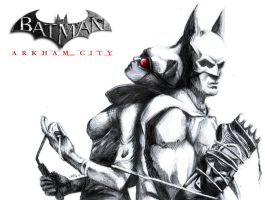 arkham city by Mad-Hatter----X