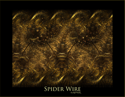 Spider Wire by deadlyMETAL