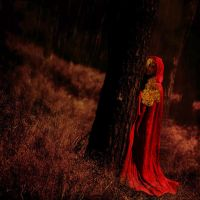 little red riding hood by Fussel2112