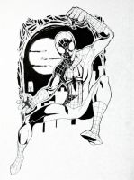 Spidey 2012 by BlackArachnid