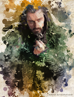 Thorin by bolatin