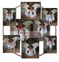 Prototype Angel Exclusives by mizzd-stock