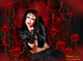 Red Rose Valentine by tinca2