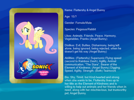 Sonic X: FIU eye-catch card: Fluttershy and Angel by bvge