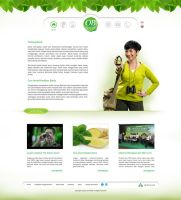 OB Herbal Website Design by InsightGraphic