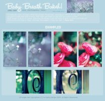 Baby Breath Bokeh by onixa