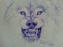 Wolf drawing by Afrim1968