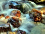 Autumn River II by mutrus