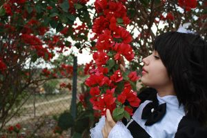 Red flowers by nami-heart-note