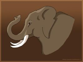 Elephant : Luck by prettychaos