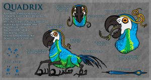 The Quadrix: Ref by Naeomi