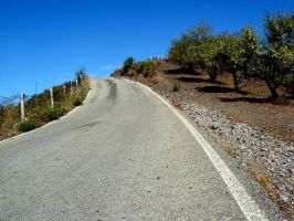 Andalusian country road by Shocktherapist