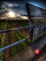 Train lines II by kubica