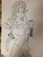 Princess Zelda by Theboyofmanynames