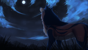 .:Gazing at the endless trails of stars:. by Kairi292
