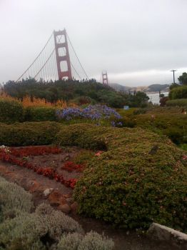 The Golden Gate Bridge by Furious-Smile