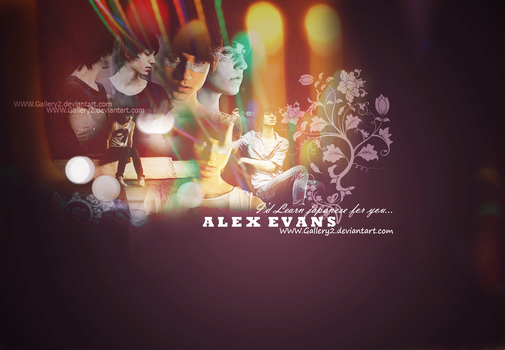 Alex Evans - Wallpaper by Gallery2