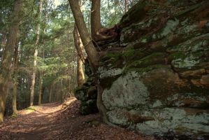 Follow the Hemlock Trail Pt. 2 by Kyle197