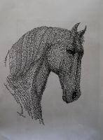 Horse by Adel-Alabbasi
