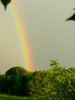Somewhere over the rainbow... by Melancholic-fairy