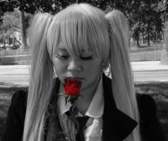 Red Rose from Hatsune Miku by darkaffiction