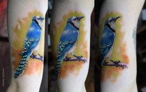 Blue Jay Bird Tattoo by Moviemetal3
