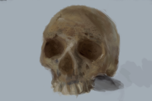 8. 1hr Study by Electrosion