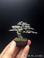 Silver mame wire bonsai tree by Ken To by KenToArt