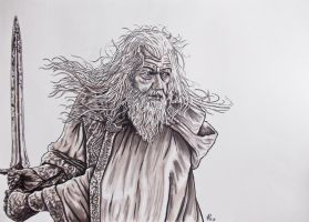 gandalf by FDupain