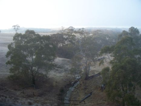 Misty morning in New South Wales by unique2063