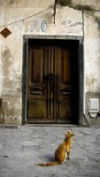 The Cat and the Door by Bapt-Delarme