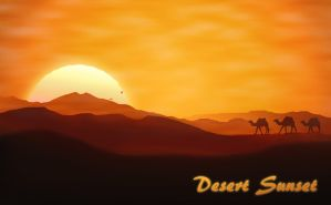 Desert Sunset by FavsCo