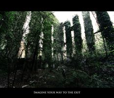 Imagine your way to the exit by Gautama-Siddharta