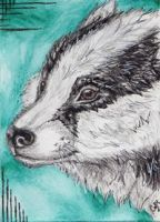 ACEO-RadosBadger by Cally-Dream