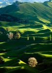rolling hills by vaughanb22