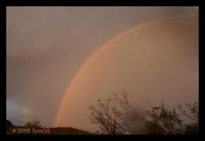A Double Rainbow Memorial by RooCat