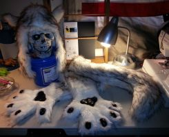 Completed Husky Threepiece Fursuit Play Partial by Irradiated-Rabbit